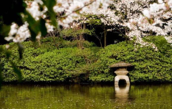 Shinsen-en Garden - 2