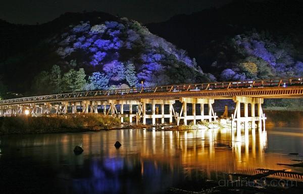 Arashiyama 3/3