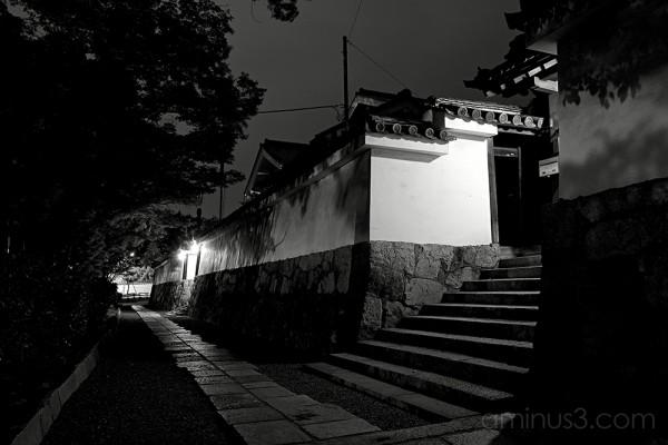 Kennin-ji 2/4 (建仁時)