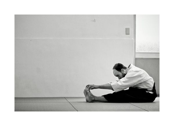 Aikido   Flexibility