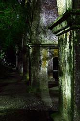The Still of the Night - II/III