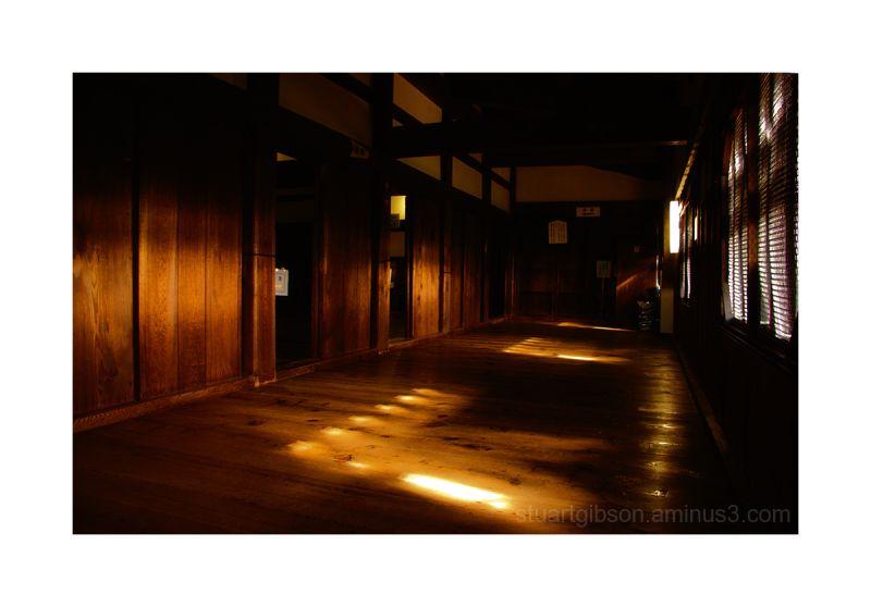 Afternoon Light - Hikone Castle