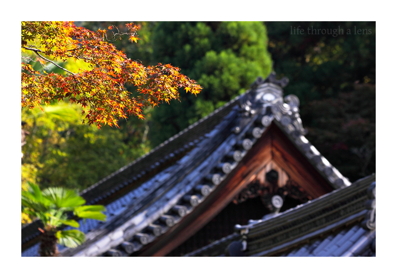 Fall, at Nanzenji - (南禅寺)