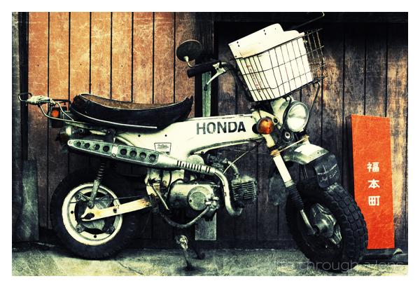 moto-cross champion