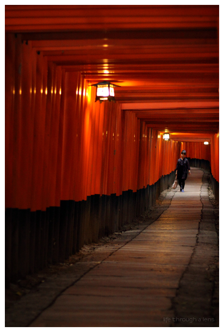 alone...at Fushimi Inari Shrine