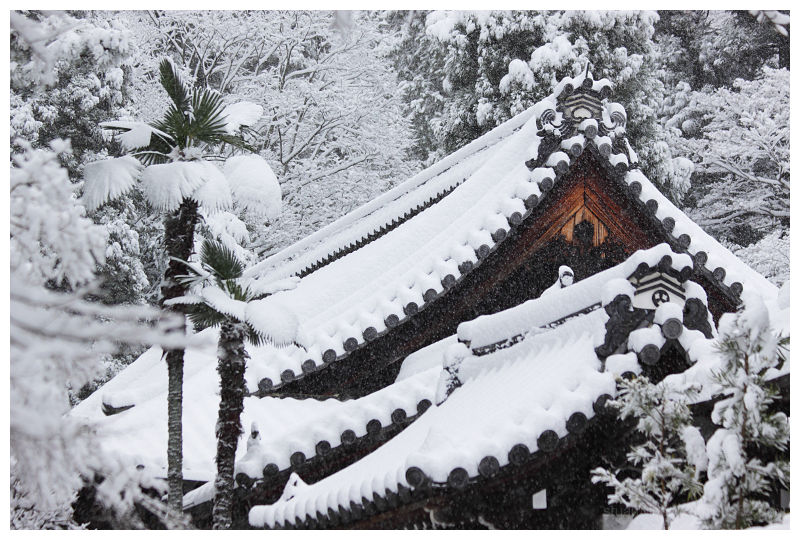 南禅寺 - Nanzenji