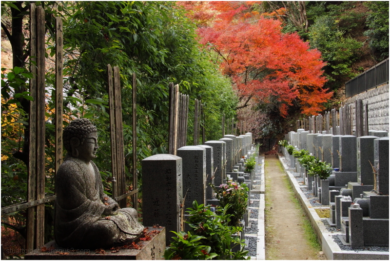 Fall, Nanzenji - 秋、南禅寺