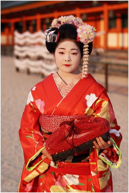 舞妓 - Maiko