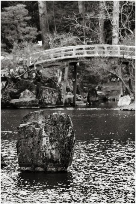 彦根、玄宮園 - Hikone, Genkyuen