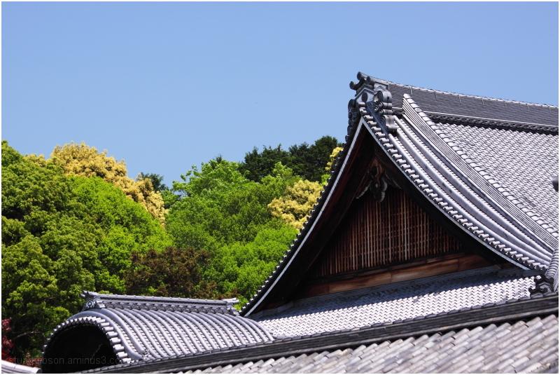 東福寺 - Tofukuji