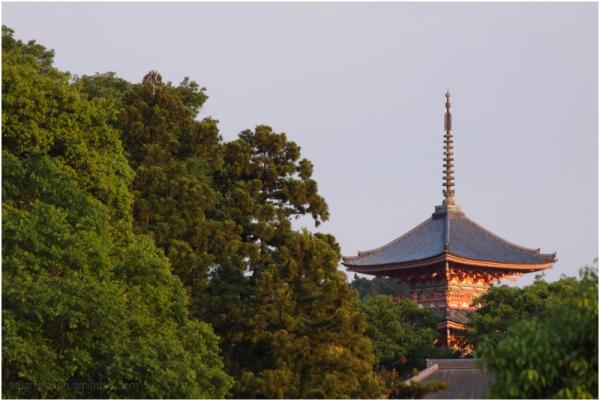 清水寺 - Kiyo Mizu Temple