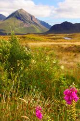 lost in the wilderness, Skye