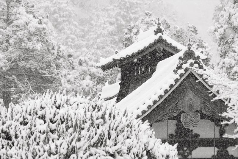 Snow, at Nanzenji