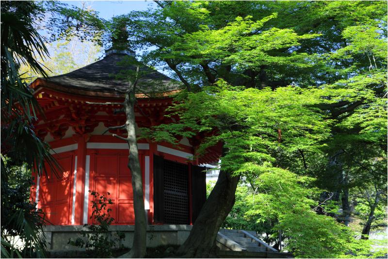 at Tofukuji 東福寺