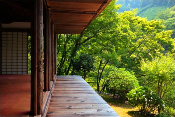 silence, at Kozanji - 高山寺