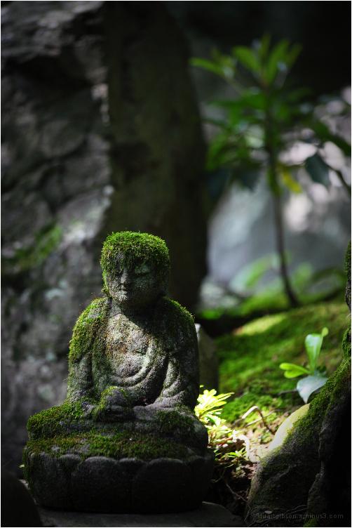 green hair, at Renge-ji - 蓮華寺
