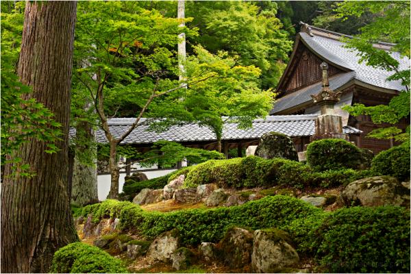 at Eigenji   永源寺
