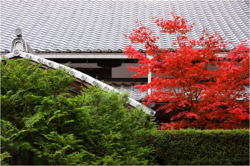 fall, at Nanzenji