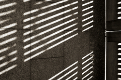afternoon shadows