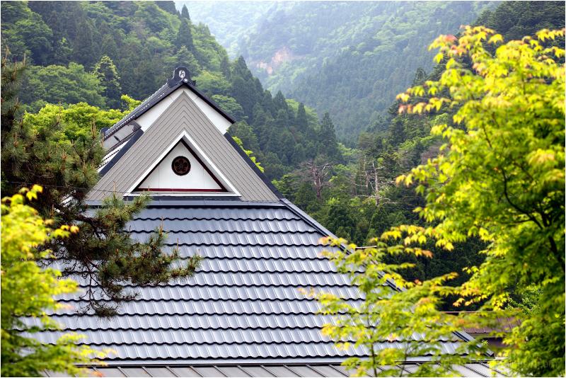 roofline treeline
