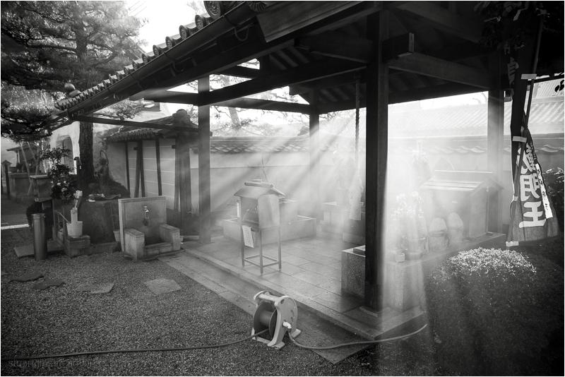 Divine light in the shrine