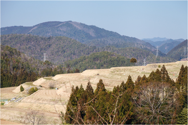 the terraced rice fields of northern Kyoto