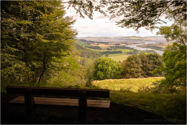 the lookout bench