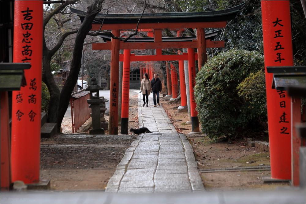 Hidden Kyoto - the way it should be