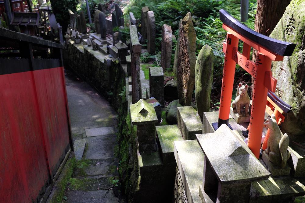 deep Fushimi