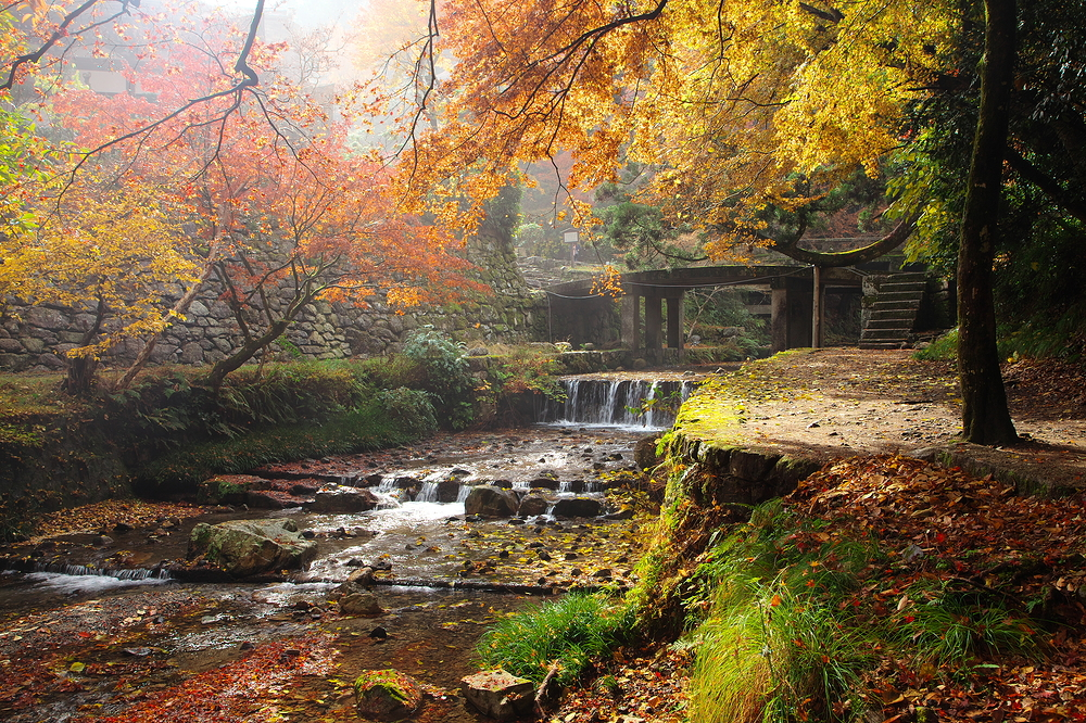Fall....in Rivendell