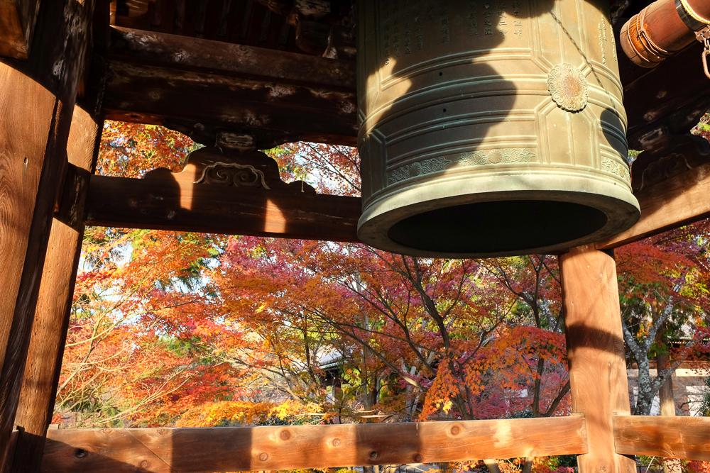in fall