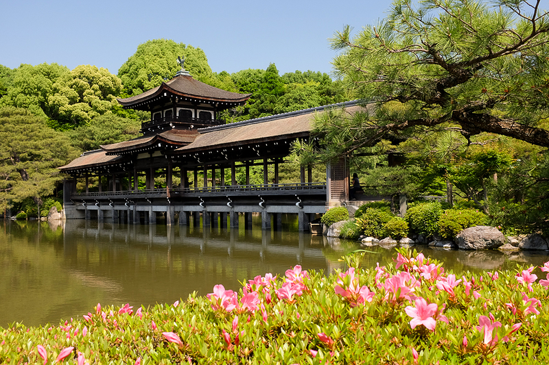 躑躅 - Azaleas, at Heian Shrine