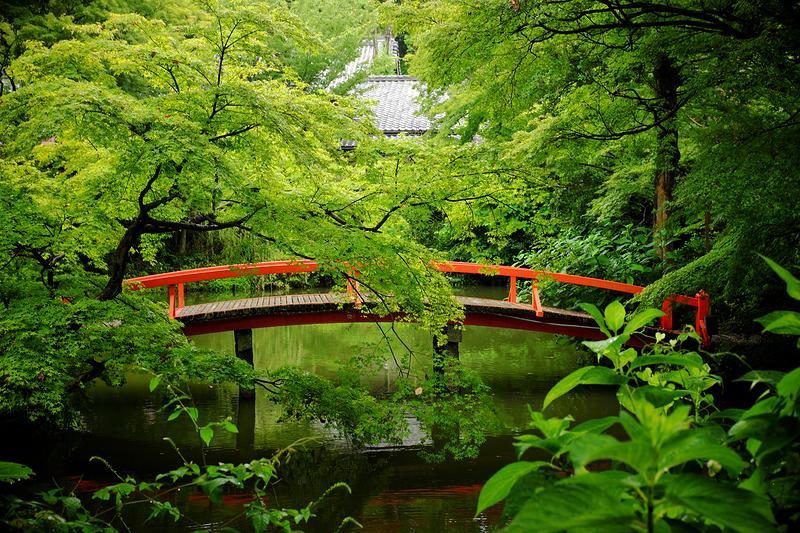 so Kyoto