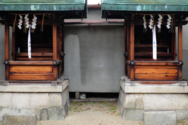 shrine cat