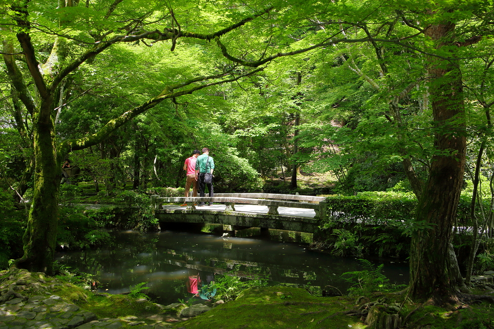 Feeling reflective at 法然院 - Honenin