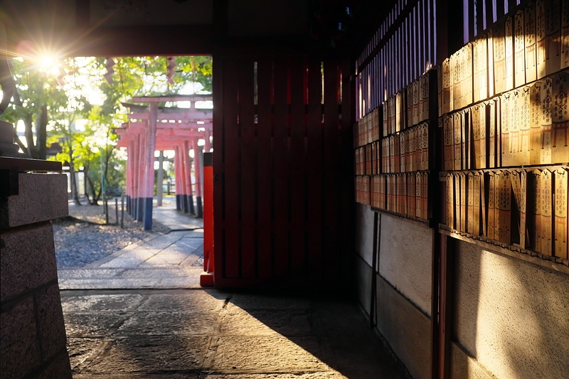 torii gates both left and right