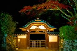 Sakamoto, by night