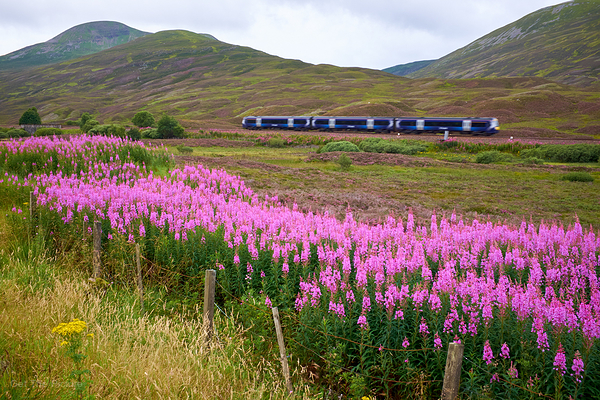 Highland Express