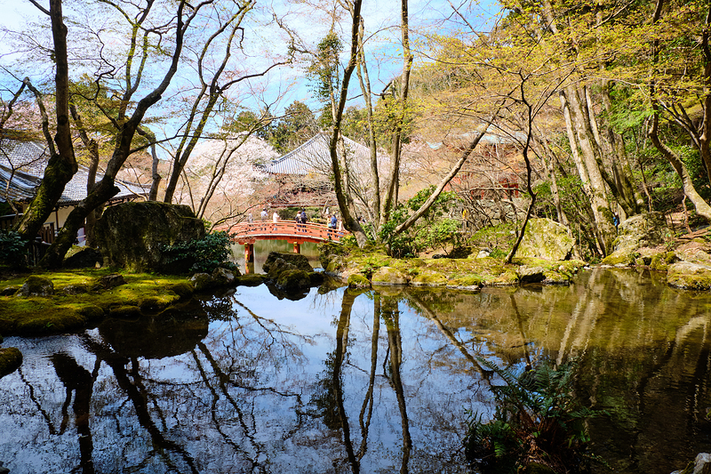 Daigoji - 醍醐寺