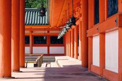 orange halls