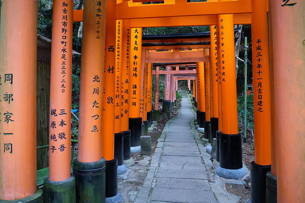 ways less travelled in the maze of Fushimi Inari