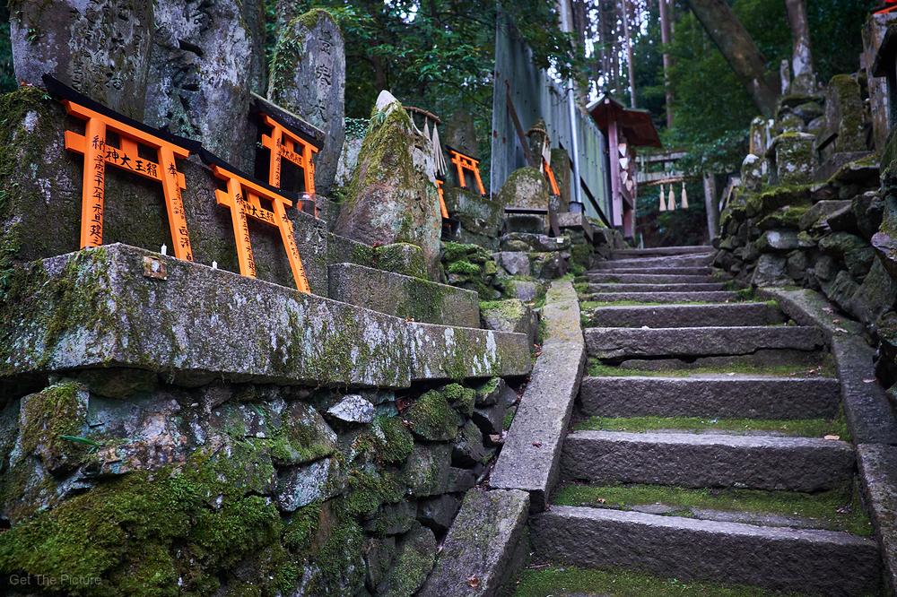 hidden Fushimi