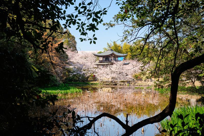 at Zuishinin