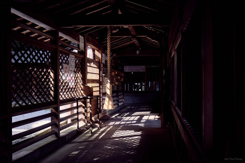 in the heart of the shrine