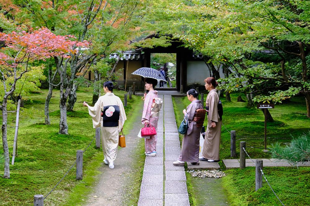 Kyoto madams