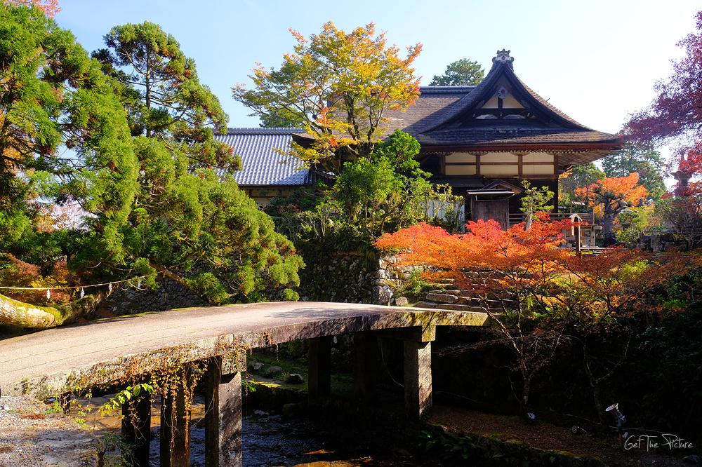 at Hiyoshi Taisha