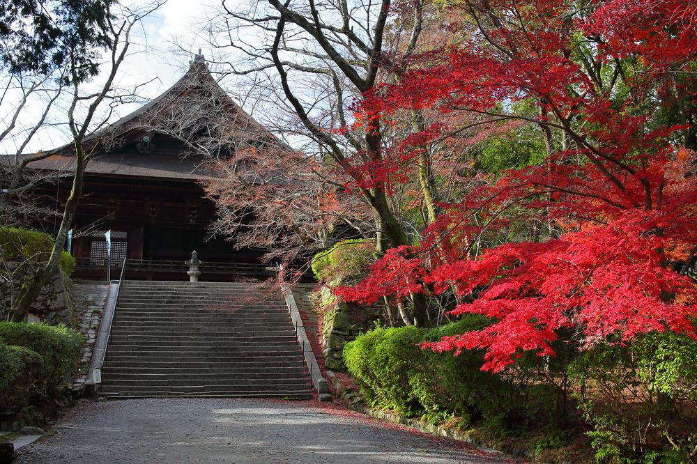 三井寺 - Mii Dera