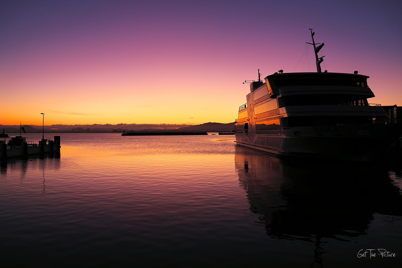Bianca at dawn
