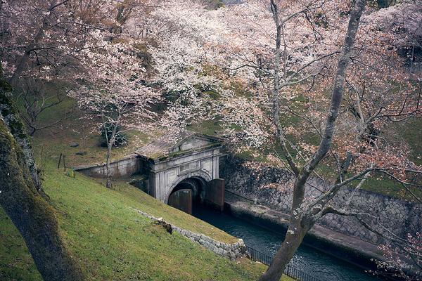 Lake Biwa Canal Portal