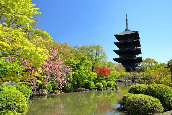 Toji Temple - Spring